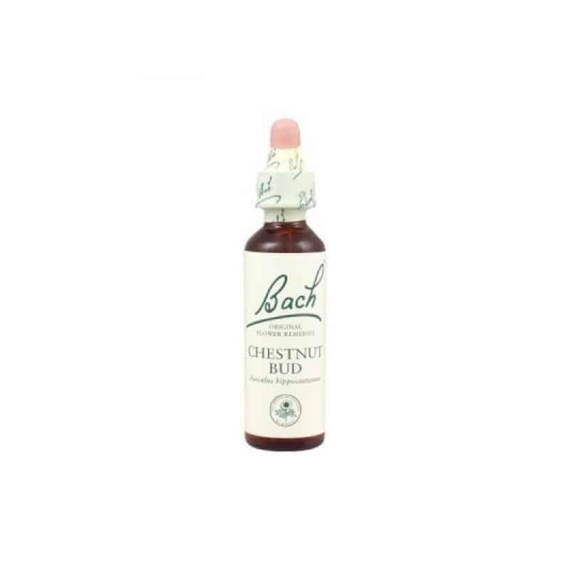 Fleurs de Bach 07 Chestnut Bud - Bourgeon de Marronnier d'Inde 20ml